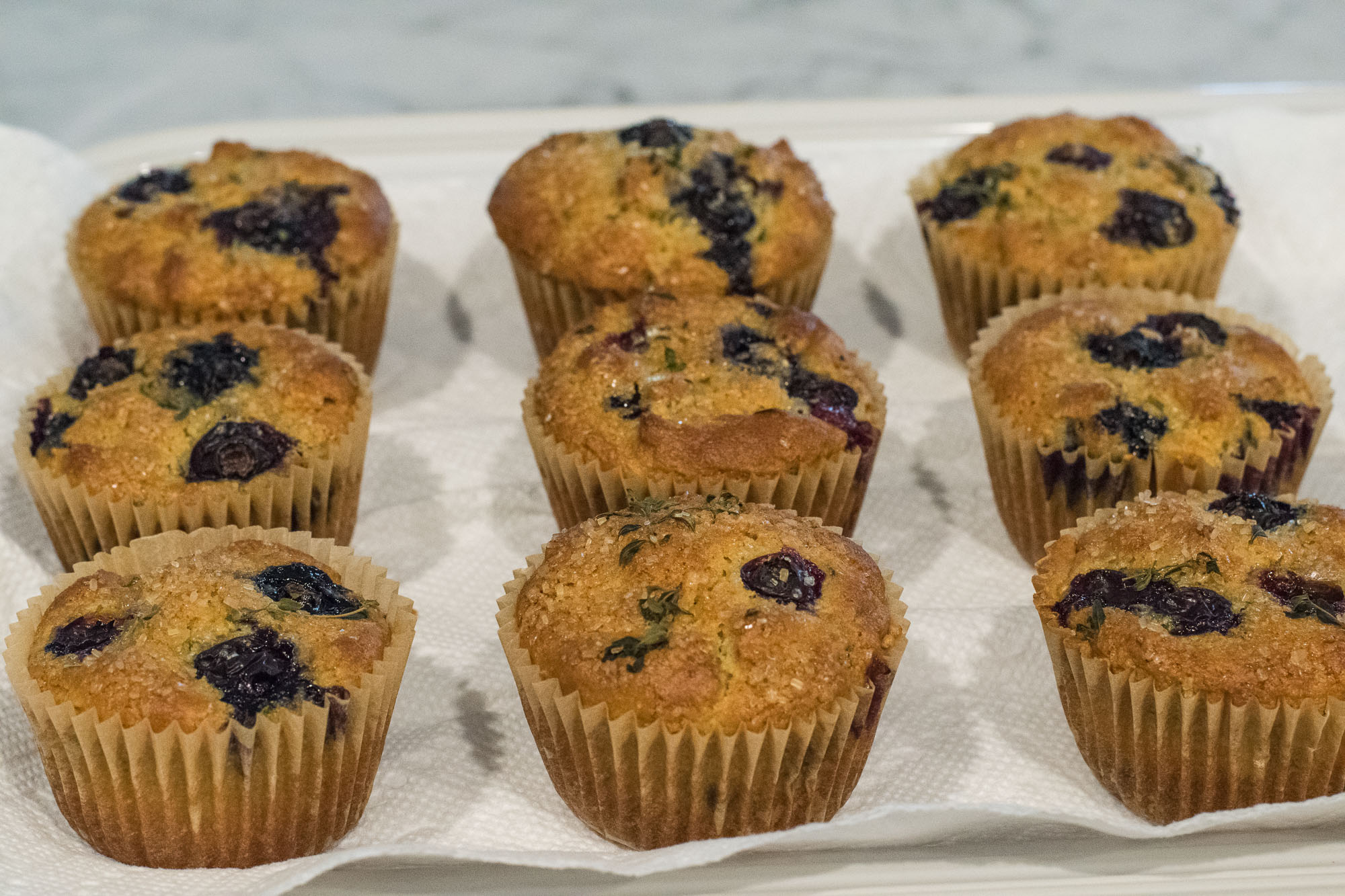 Blueberry Lemon and Thyme Muffins